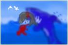 shark attack's seal