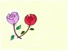 beutiful flowers